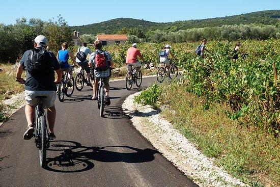 Fahrrad- und Weinverkostungstour auf...