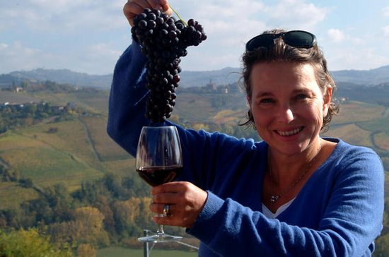 Private Wine Lovers Tour - Gorgeous Graves & Sauternes, discover the diversity