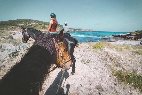 騎馬在西班牙梅諾卡島