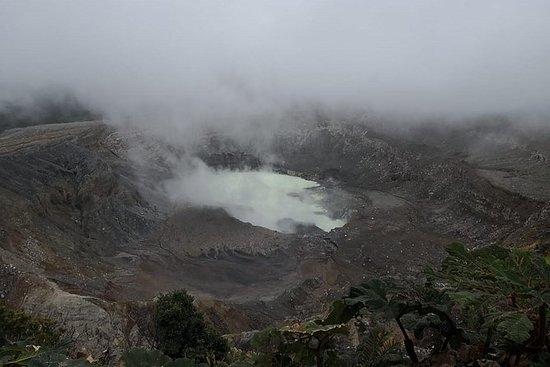 Hele dagen Poas Volcano, kaffe tour...