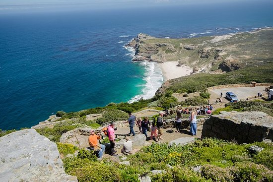 Full Day Cape Point & & Peninsula