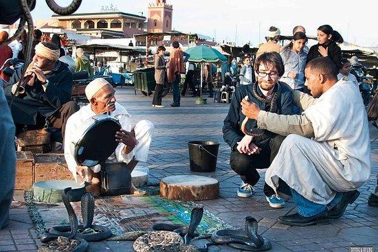 馬拉喀什徒步旅行與官方城市指南