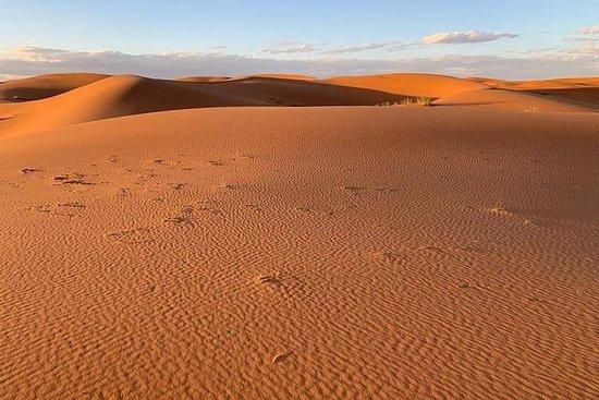 Tour di 4 giorni nel deserto del