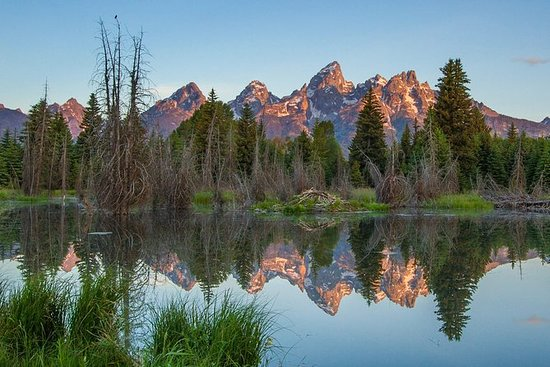 Sunrise 4 ore Grand Teton Tour