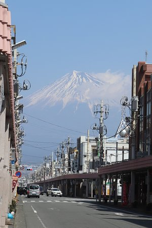 Fuji Honchodori
