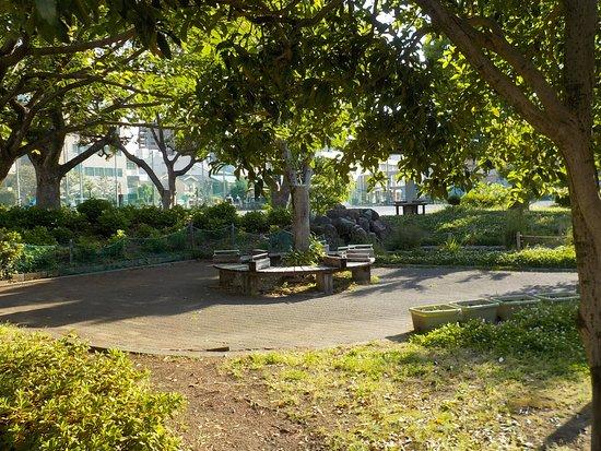 Tenma Park