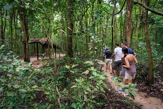 Cu Chi Tunnels & Mekong Delta 1-daagse ...