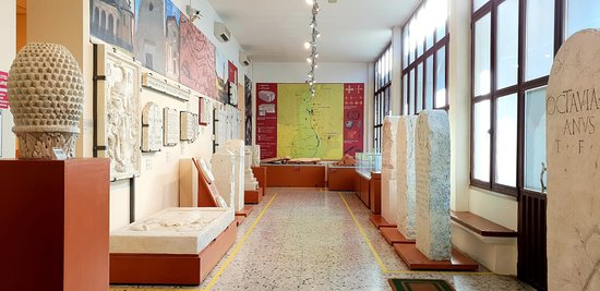 Museo archeologico PAST