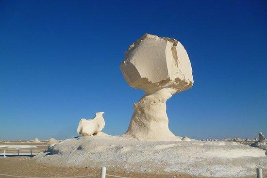 Excursión en el Desierto Blanco y...