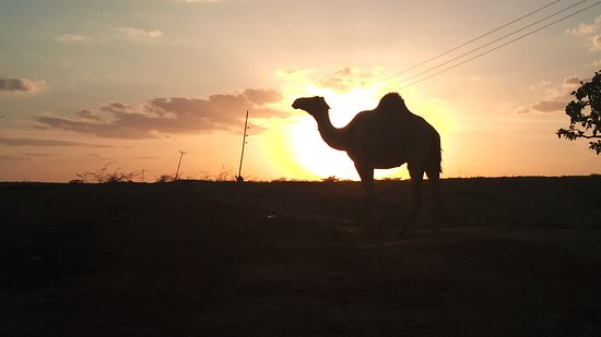 Garissa, Kenia: I'm going home. Have a nice evening!