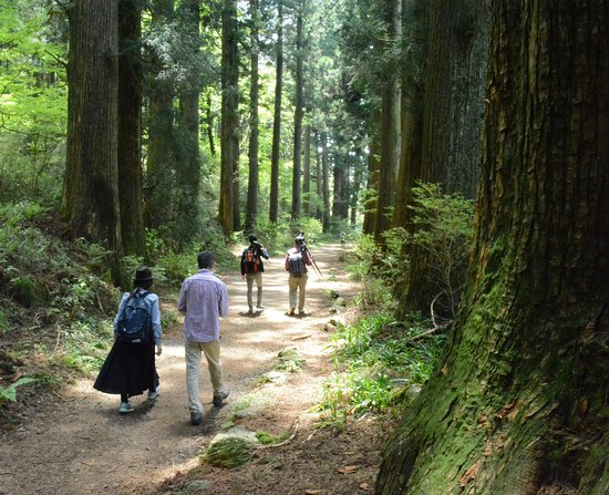 Walk Hakone Hachiri