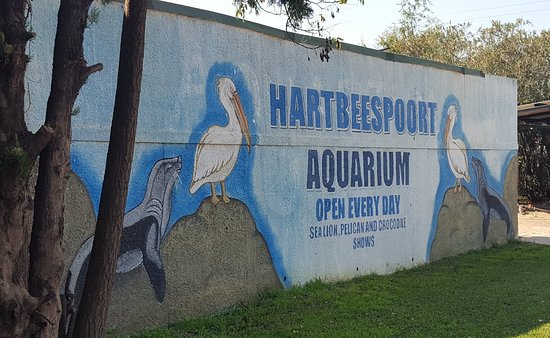 Hartbeespoort Dam Aquarium