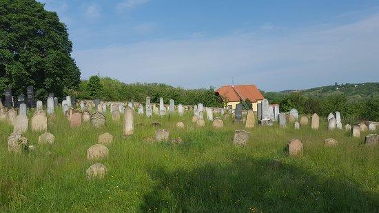 Dolni Kounice, สาธารณรัฐเช็ก: židovský cintorín