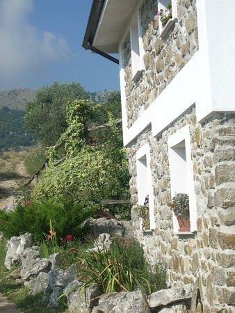 Agriturismo La Fattoria - Contrada Casalicchio 2 - 84020 Aquara (SA) - Aperto su prenotazione  tel. 0828.962716 - 349.4316499
