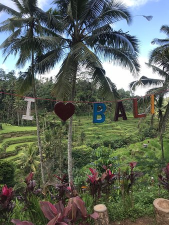 THE BEST TOURS IN BALI