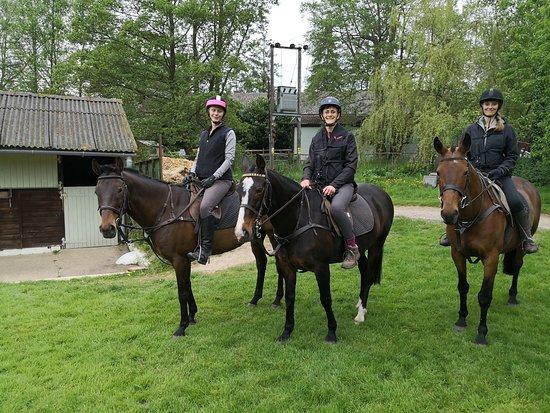 Slades Farm Equestrian Ltd