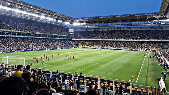 Sukru Saracoglu Stadyumu