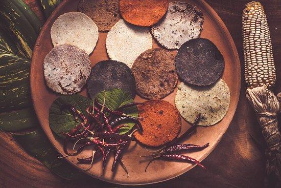Nixtamal: Tortillas hechas de diferentes maíces y sabores como cacao, páprica, chía, chaya, canela y axiote entre otras ___________________  Tortillas made with different corns and flavors, such as cacao, paprika, chia seeds, chaya leaves, cinnamon and axiote spice etc.