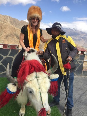 Learning to ride a yak