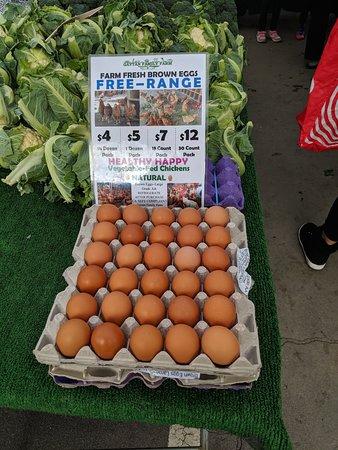 Free rang eggs.