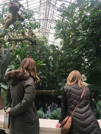 Friends visiting Como in February - it was snowing outside! Every time I walk into the conservatory, my glasses fog up really badly :')