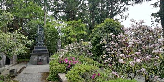 Kakurin-ji Temple: 境内のシャクナゲが満開でした
