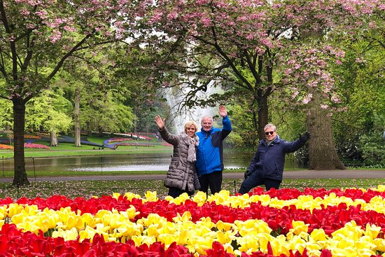 Guided Private Keukenhof, Dutch Tulip Garden Day Tours.  Exclusive Tours & Airport Transfers in Amsterdam, The Hague, Rotterdam & Western Europe
