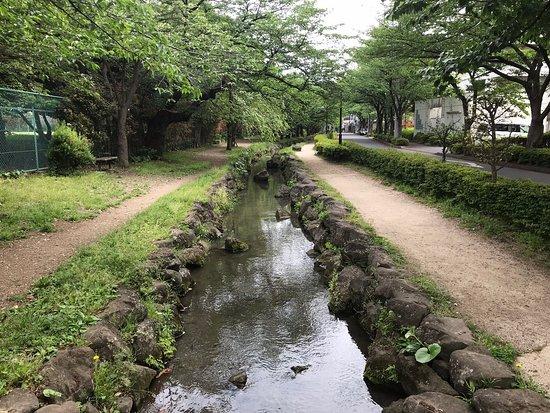 Shinodabori Shinsuiryokudo