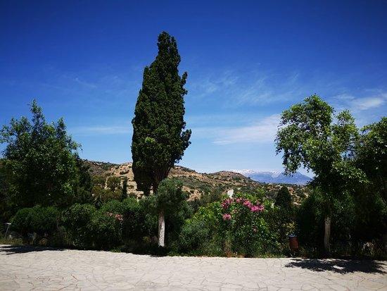 Moni Odigitrias照片