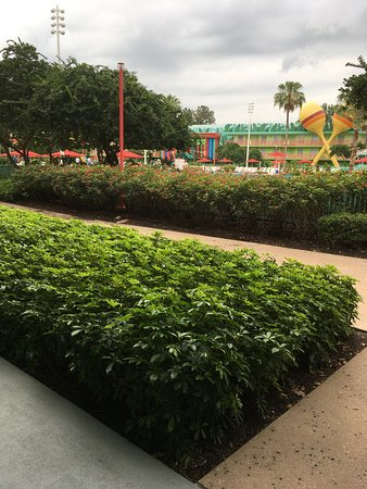 Disney's All-Star Music Resort: garden and view of pool
