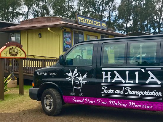 Kahuku Farms is a great lunch spot where guests get fresh, farm to table food that is delicious and filling.  Turn any of Your Private Tours of Oahu into a food tour.