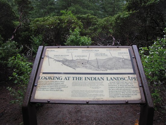 Randle, WA: This sign is along the trail to Layser cave.