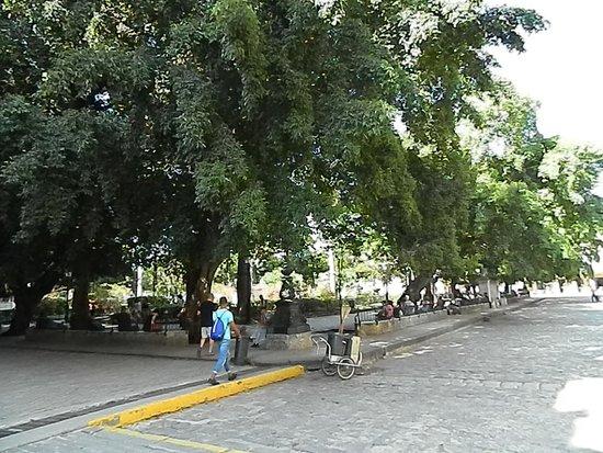 Villa Tropico: Beautiful park