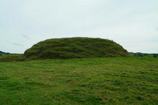 Dalbeattie, UK: Motte of Urr