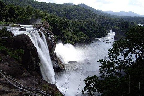 Best of Kerala Tour (Exclusive...