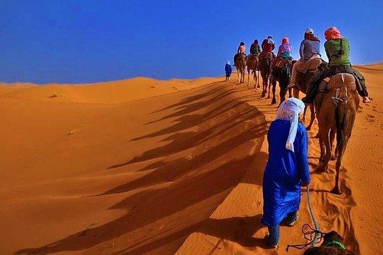 3天从马拉喀什出发,在菲斯经撒哈拉沙漠(Merzouga)结束