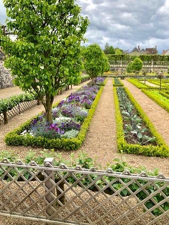 Het kasteel staat bijna in de schaduw van de tuinen. De tuinen beslaan drie niveau. Tijdens mijn bezoek was een grote groep tuinieren druk bezig met het onderhoud.