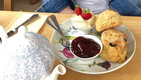 Image Primrose Tea Rooms in South West