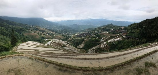 Trek the Terraces Private Tour 1 Day
