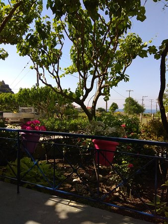 Παναγιά, Ελλάδα: Βράκας