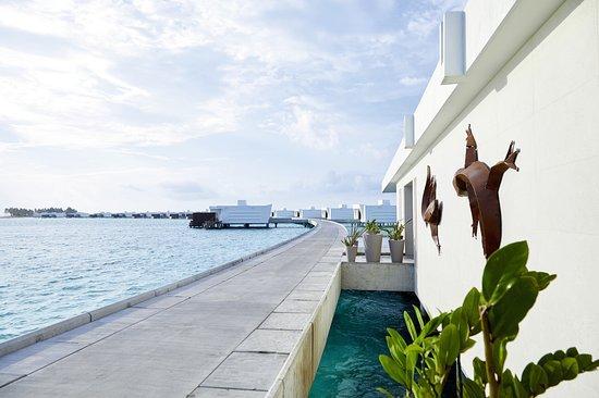 Hotel Riu Palace Maldivas: Hotel
