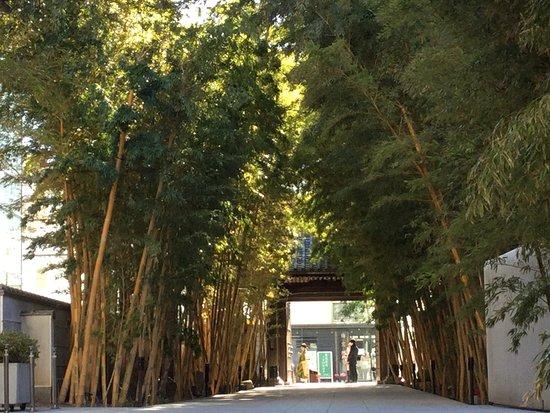 Aoyama Baisouin Temple