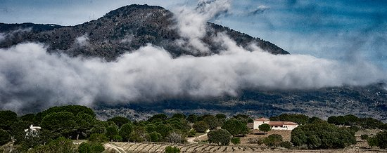 Bodega Valleyglesias 사진