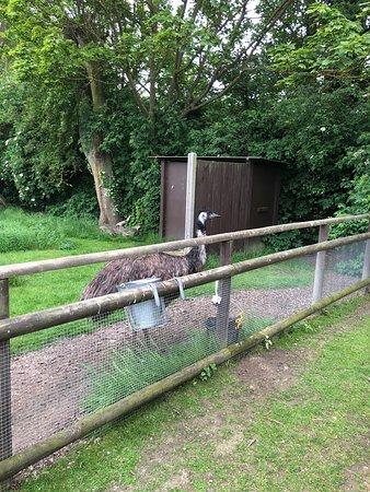 Lovely wildlife park