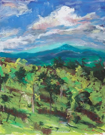 Corinth, Vermont: Our Label...the view from our vineyard done in pastels