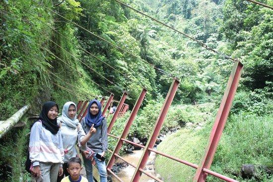 Madakaripura Waterfall: Famili Trip by Herry Tour and Travel