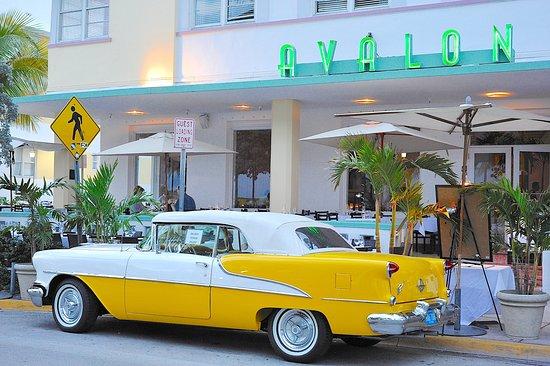 Avalon Hotel Miami Beach Florida