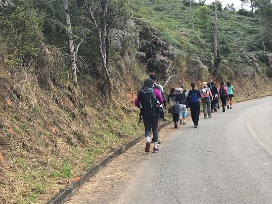 Parque Estadual de Pedra Azul: Parque Estadual da Pedra Azul - trilha do lagarto