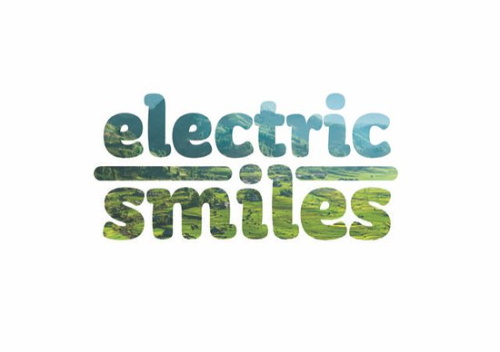 Electric Smiles E-bike Tours