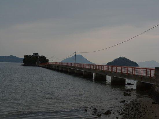 津嶋神社を横から眺める